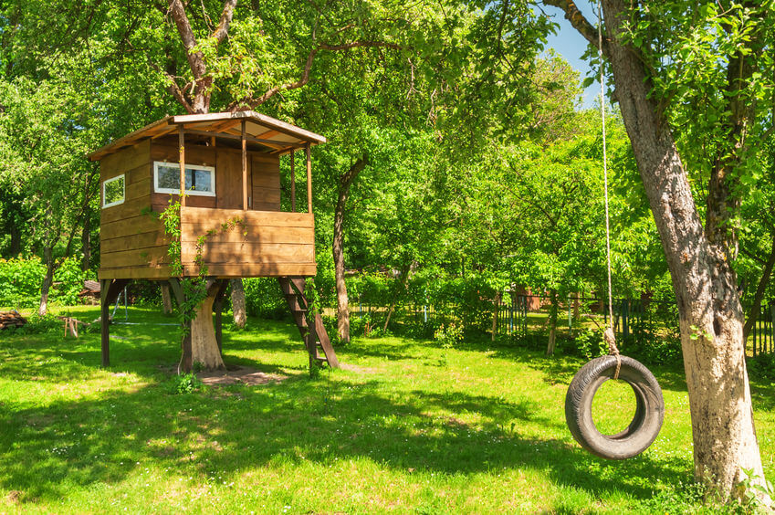 Image for blog post on dogs, trampolines, tree houses and home insurance