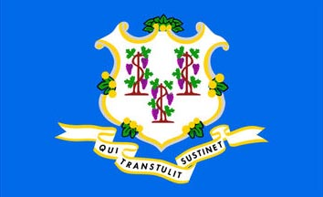 The Connecticut state flag is the image for the Connecticut insurance page on the ValChoice website