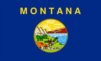 The Montana state flag is the image for the Montana insurance page on the ValChoice website