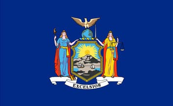 The New York state flag is the image for the New York insurance page on the ValChoice website