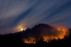 Image for blog post on how to prepare for wildfires near me